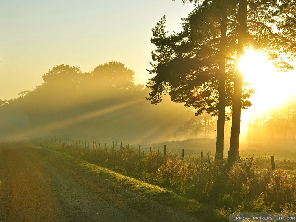 old-road-summer-morning-wallpapers-1024x768